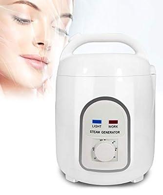YJINGRUI Sauna Steamer Portable Pot 1.5L Steam Generator 110V 850W US Plug Fumigation Machine Home SPA Shower for Body Detoxifi Weight Loss