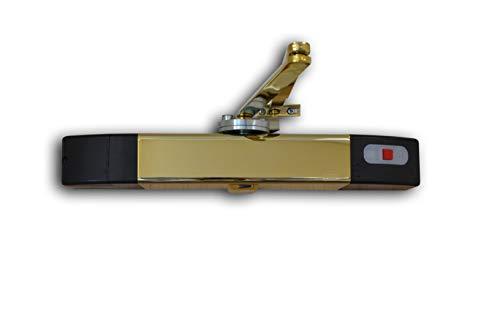 Agrippa agdcbr1 akoestische deursluiter, DIGITAL, messing (Pack van 3)