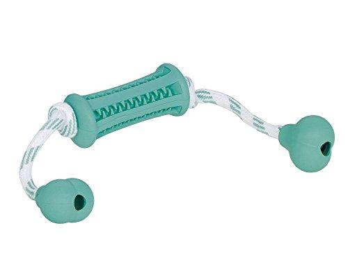 Nobby Dental Fun Jouet Bâton avec Corde en Caoutchouc Solide pour Chien Turquoise/Blanc 37 x 9 cm