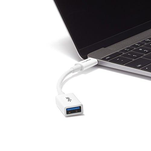 AmazonBasics USB Type-C to USB 3.1 Gen1 Female Adapter Cable - White