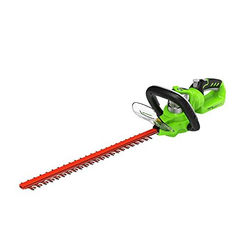 Greenworks Tools 2200107 Cortasetos Inalámbrico, 24 V, Verde, 57 cm