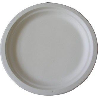 jetables biodégradables Plate – 24,8 cm (lot 125) – idéal pour Les fêtes, Les barbecues, Les Pique-niques et Les événements