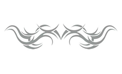 carstyling XXL Tatou vitre et Voiture Argent Set de 2 Droite/Gauche Chaque 190 x 420 mm
