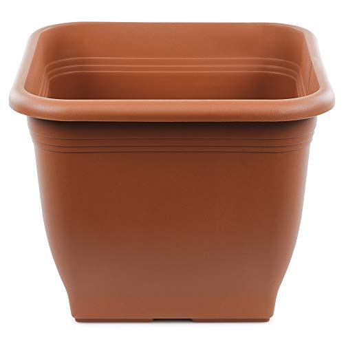 Seebauer Garden®   Macetero Nicol   Forma moderna y cuadrada   Macetero para flores   Resistente a...