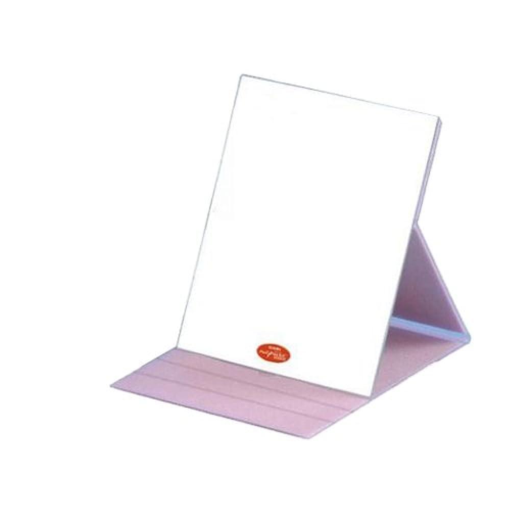散髪奇妙なレディHP-61 ナピュア プロモデル角度調整3段階付き折立ミラー エコ?ピンク(L)