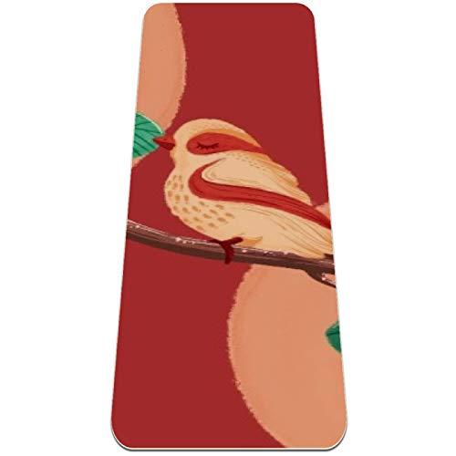 nakw88 Alfombrilla de yoga antideslizante para yoga, pilates y ejercicios de suelo (72 x 24 x 6 mm) para mujeres y niñas