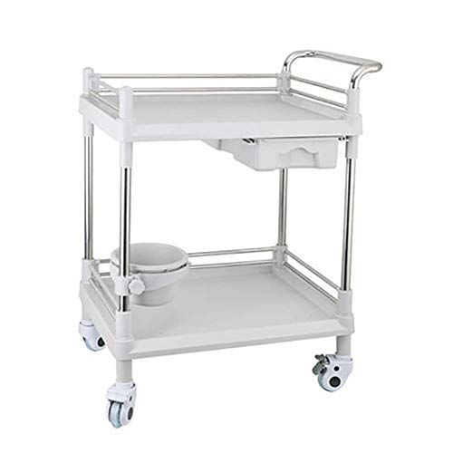 Utility  Heavy Duty ABS Stainless Steel Medical Trolley, 2-Tiers Salon Spa Beauty Hairdressing Rolling Trolley  with 1 Drawer, Gray (Color : 54×37×90cm)