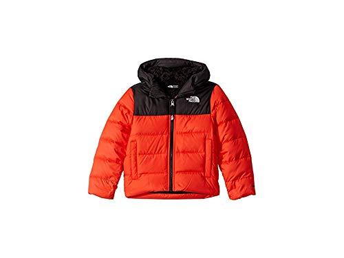 The North Face Kids Boy's Moondoggy 2.0 Down Hoodie (Little Kids/Big Kids) Fiery Red XL (18-20 Big Kids)