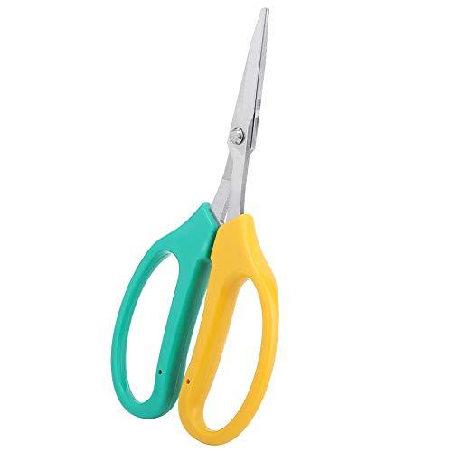 Changor InstrumenteNrw - Tijeras de podar ergonómicas (4 cm, acero inoxidable y PVC)