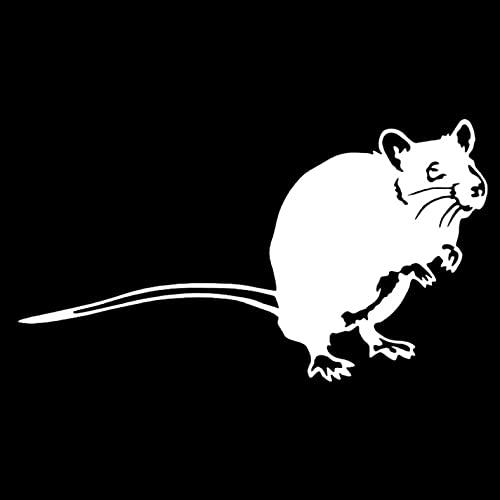 N\C Etiquetas engomadas del Coche 18,2 cm * 10,2 cm Moda Rata autoadhesiva Pegatinas de Pared Impermeables calcomanía para Coches Nevera Cocina Decoraciones (3 Piezas)