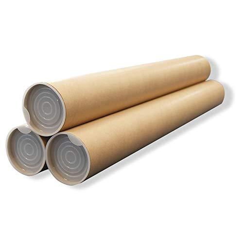 ボックスバンク 紙管 紙筒 丸筒 (A2) ポスター・カレンダー収納用 3本セット SS10-0003