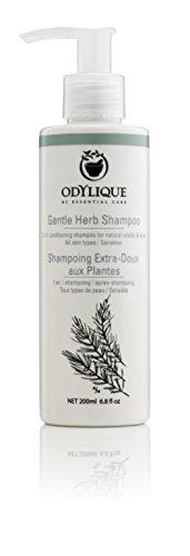 Odylique Naturkosmetik Kräuter Shampoo - Mildes Bio Shampoo ohne Silikone & Sulfate 200ml