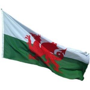 Premium Qualität, Motiv Walisische Flagge mit Drache 2.44 meters X 1.52 meters