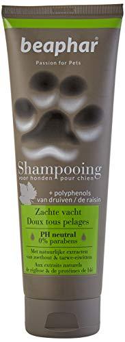 BEAPHAR – Shampoing premium doux tous pelages pour chien – Aux extraits naturels de réglisse & de protéines de blé – Nourrit, pelage sain et brillant – pH neutre & sans parben – 250ml