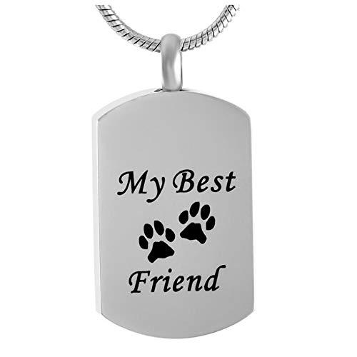 Wxcvz Colgante Cenizas Pet Memorial Jewelry Urns-Double Paws My Best Friends Dog Tag Joyería De Cremación De Acero Inoxidable, Kits De Llenado Gratis