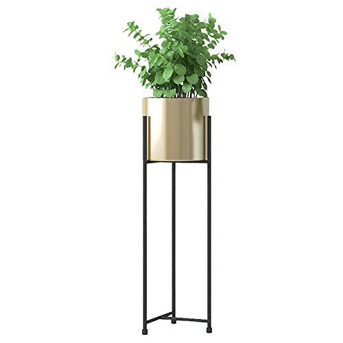 Support pour Plante Présentoir de Fer Support de Rangement pour échelle Supports à Fleurs Support pour Pot de Fleurs Balcon Chambre à Coucher Jardin Taille 21.5x57 cm / 18.5x75 cm (L x H) Or
