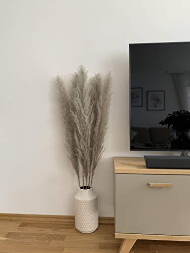 MARAZ Pampasgras Groß natürlich getrocknet als Deko für Schlafzimmer Hochzeit Wohnzimmer Couchtisch Pampas Gras getrocknete Blumen Trockenblumen Boho Zweige Federn Eukalyptus (Naturfarbe)