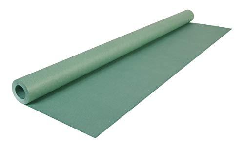Clairefontaine 195755C Rolle (färbiges Kraftpapier, 10 x 0,7 m, 65 g, PEFC, ideal für Ihre Bastelprojekte) 1 Stück dunkelgrün