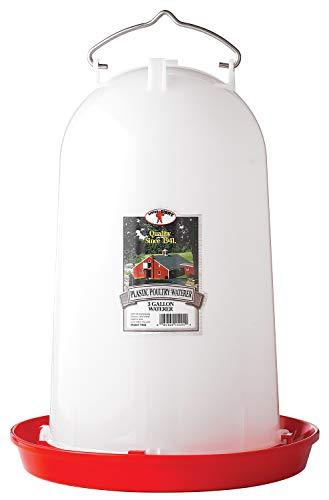 Little Giant Plastic (3 Gallon) Gravity Fed Waterer