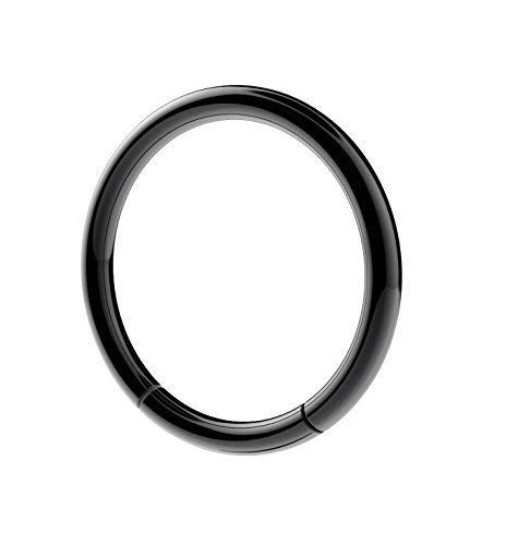 Vault 101 Limited Surgical Steel Black Segment Ring Lip Nose Eyebrow Belly Nipple Ear (1.2mm(16g), 10 MM)