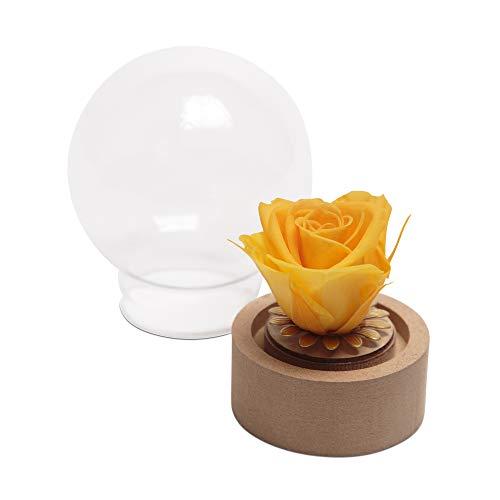 Kleine Rose im Glas ewige Blume Gelb echte haltbare Rose mit Glaskuppel rund (Small, Gelb)