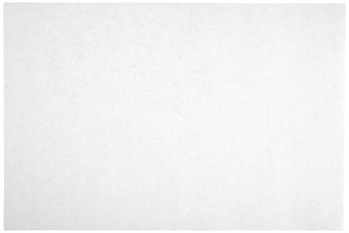 Sax Sulphite Drawing Paper, 80 lb, 9 x 12 Inches, Extra-White, Pack of 500 - 053943