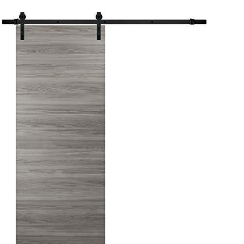 Sliding Barn Door 28 x 80 in with Hardware | Planum 0010 Ginger Ash | 6.6FT Rail Hangers Stops Steel Set | Modern Solid Panel Interior Closet Bedroom Pantry Doors
