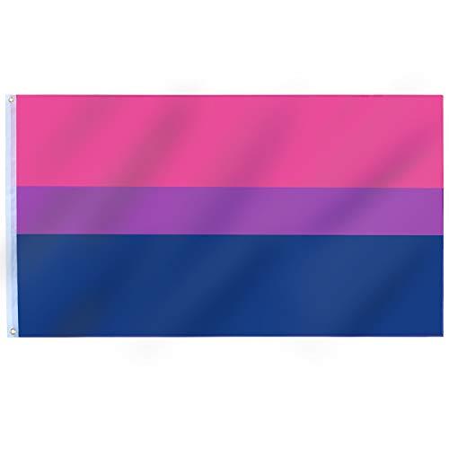 TRIXES Bi-Pride Flagge - Große Flagge für drinnen und draußen - Feiern Sie die Vielfalt auf Bi Pride und LGBT Festivals Sommerparties - Rosa Lila Blau - 150 cm x 90 cm