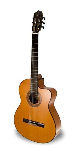 APC Instruments 9F - Guitarra flamenca