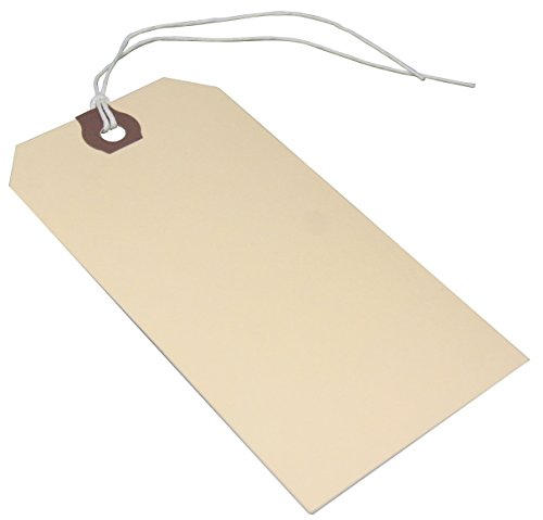 Amram Strung Shipping Tags and Hang Tags, 4 3/4-in x 2 3/8-in, 100 Tags, Manila with Reinforced Eyelet