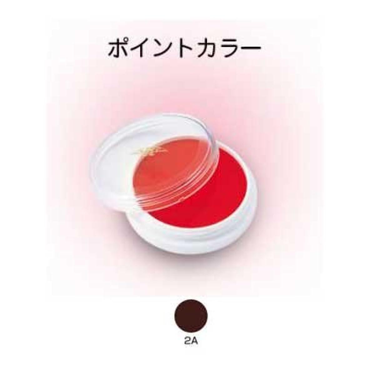 ライニングカラー 4g 2A【三善】