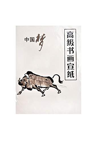 Quantum Abacus Hochwertiges Raw Xuan Papier für Kalligraphie und Malerei, chinesisches Quarto-Format (51cm x 37cm), 35 Blatt, Mod. WP-4-2212