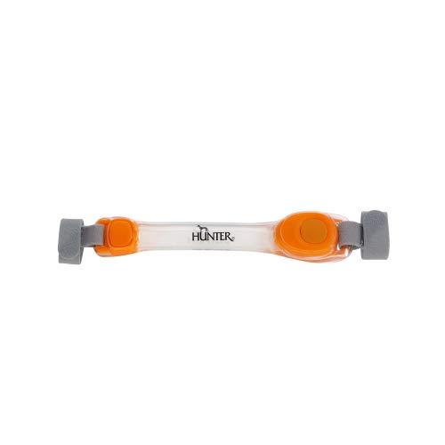 Hunter LED Yukon - Adaptador de luz para collar de perro, arnés o cuerda
