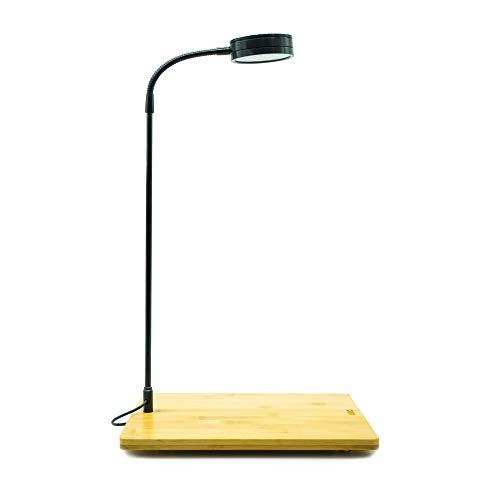 Full Spectrum LED Desk Lamp with Bamboo Board, fits Aquarium Nano Tank, Betta Fish Tank, Potted Plants, Succulent, Wabi Kusa (5W)