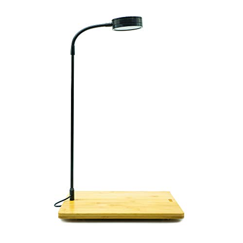 Full Spectrum LED Desk Lamp with Bamboo Board, fits Aquarium Nano Tank, Betta Fish Tank, Potted Plants, Succulent, Wabi Kusa (5W)