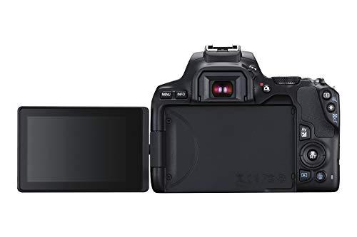 Canon EOS 250D Digitalkamera - mit Objektiven EF-S 18-55mm F4-5.6 IS STM + EF 50mm F1.8 STM (24,1 MP, 7, 7 cm (3 Zoll) Vari-Angle Display, APS-C-Sensor, 4K, Full-HD, DIGIC 8, WLAN, Bluetooth), schwarz