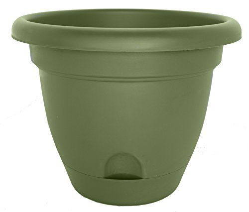 Bloem LP0842 Lucca Pot de fleurs Vert 20 cm