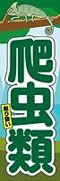 のぼり旗スタジオ のぼり旗 爬虫類取扱005 通常サイズ H1800mm×W600mm