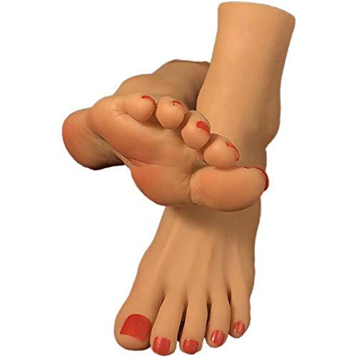 NCBH Foot Fetish, Silicone Feet Fetish, Fetiches de pies, Pie de maniquí Femenino de tamaño Natural de Silicona con exhibición de Hueso, joyería, exhibición de Arte,Dark Complexion,B
