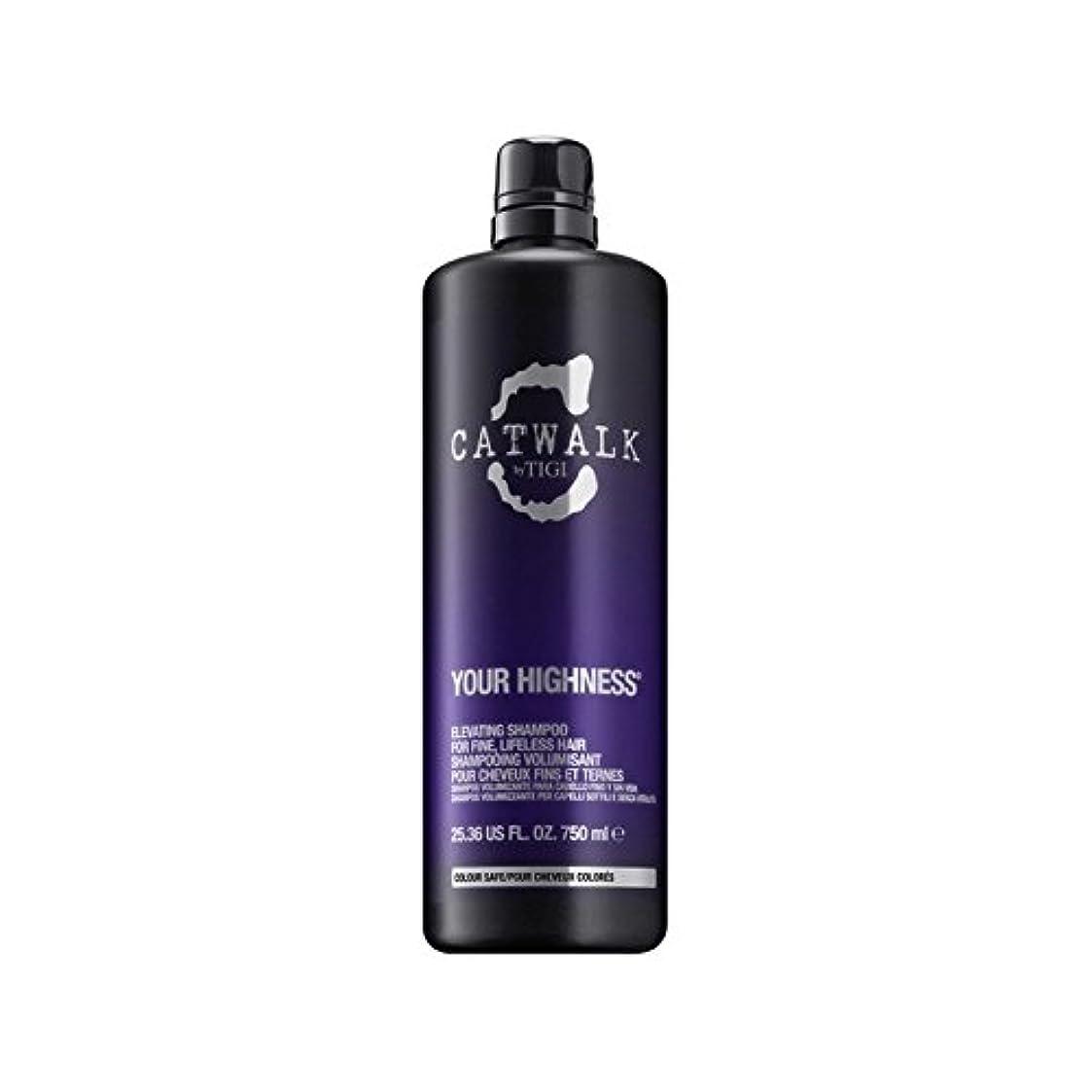 辞任眠っているペースシャンプーを昇降ティジーキャットウォーク殿下(750ミリリットル) x4 - Tigi Catwalk Your Highness Elevating Shampoo (750ml) (Pack of 4) [並行輸入品]