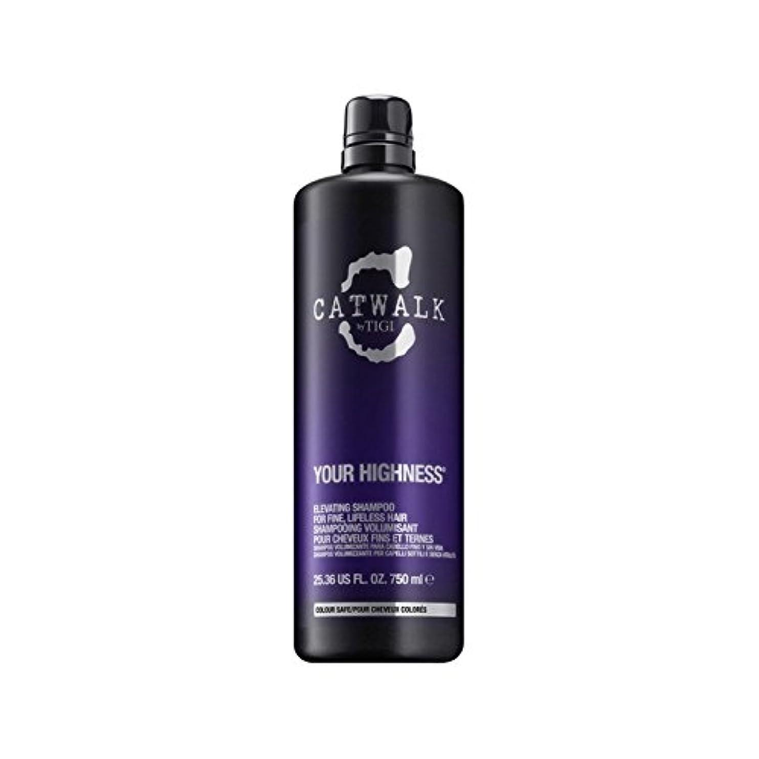 薄いです早熟対称Tigi Catwalk Your Highness Elevating Shampoo (750ml) - シャンプーを昇降ティジーキャットウォーク殿下(750ミリリットル) [並行輸入品]