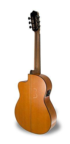 APC 9F -Guitarra clásica: Amazon.es: Instrumentos musicales