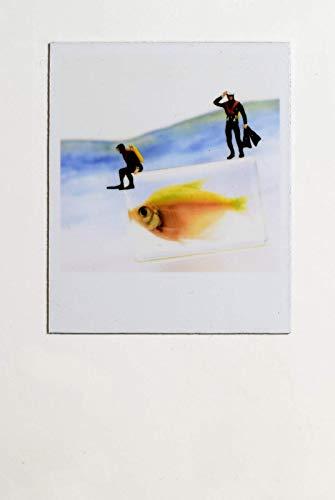 Cooler Magnet Kühlschrank Magnettafel Taucher vor Tauchgang mit Fisch zum Verschenken und Verwenden