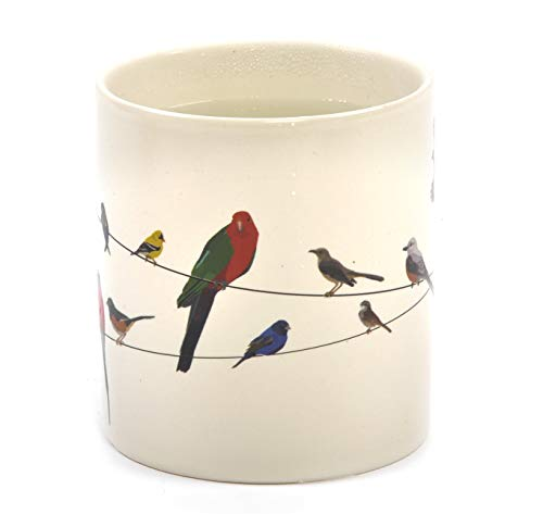 Birds on a Wire Heat Changing Mug - Add Coffee or Tea and Colorful Birds Appear - Comes in a Fun...