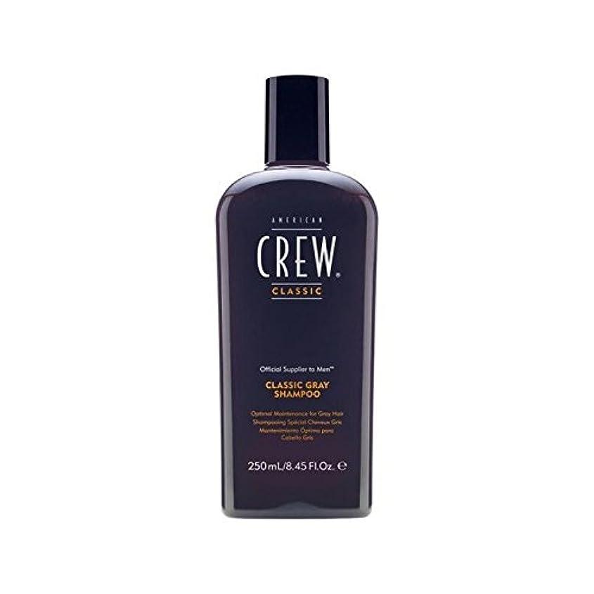 American Crew Classic Gray Shampoo 250ml (Pack of 6) - アメリカンクルークラシックなグレーシャンプー250 x6 [並行輸入品]