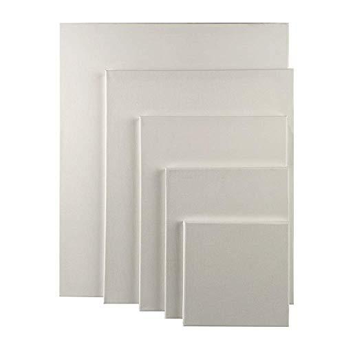 Unishop Set 5 Lienzos para Pintar, Lienzos de Algodón para Pintura Acrílica y Óleo, Canvas 100% Algodón para Todo Tipo de Pintura. (40x40cm)