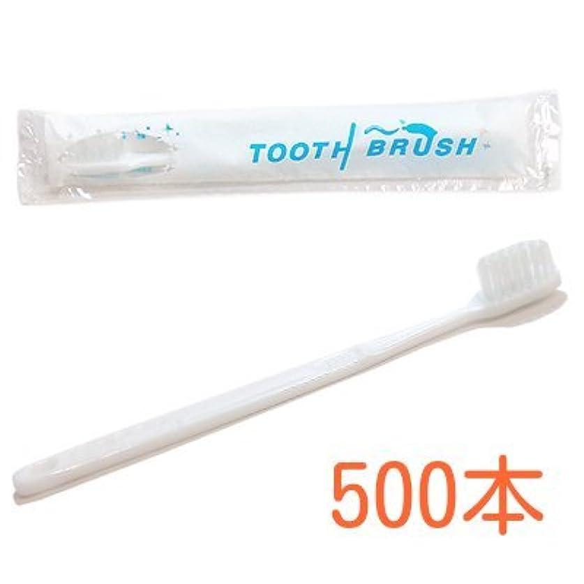 言語扇動ドループ業務用 粉付き歯ブラシ インスタント歯ブラシ 選べるセット 500本