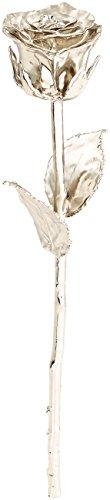 St. Leonhard Platinrose: Echte Rose für immer schön, mit 18-karätigem* Platin veredelt, 28 cm (Schmuck-Rose)