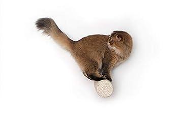 The 11 Best Sisal Cat Scratchers 2019 [Cats LOVE Sisal!]