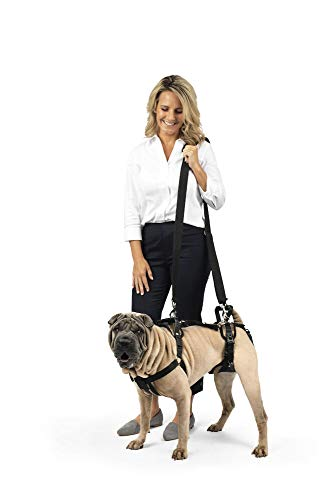 PetSafe CareLift Support Harness - Full Body Lifting Aid with Handle and Shoulder Strap - Great for Pet Mobility and Older Dogs - Comfortable, Breathable Material - Easy to Adjust - Medium